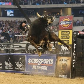 Discount PBR: Professional Bull Riders Tickets for Military